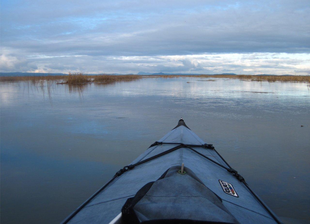 05 Flooded swamp.JPG