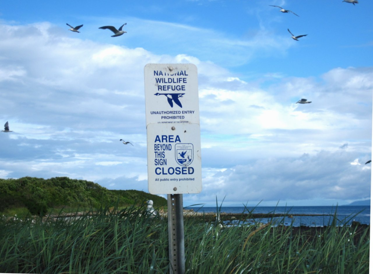 09 Regulatory signage on Smith Island.JPG