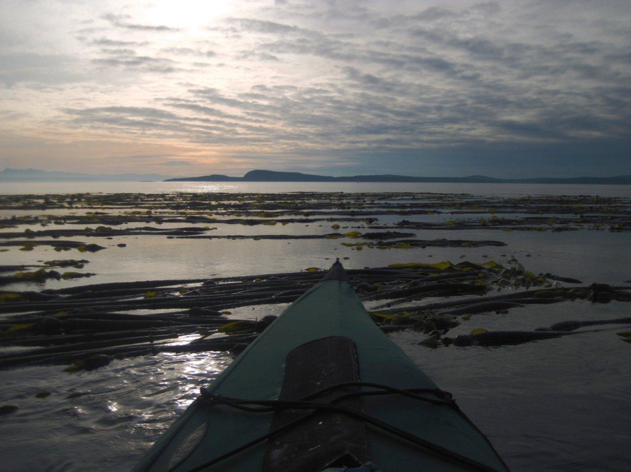 12 Sunset near Allan Island.JPG