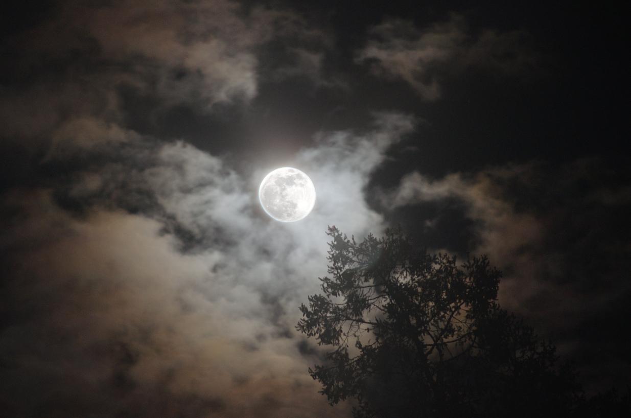 16 Moon over Hope Island.jpg