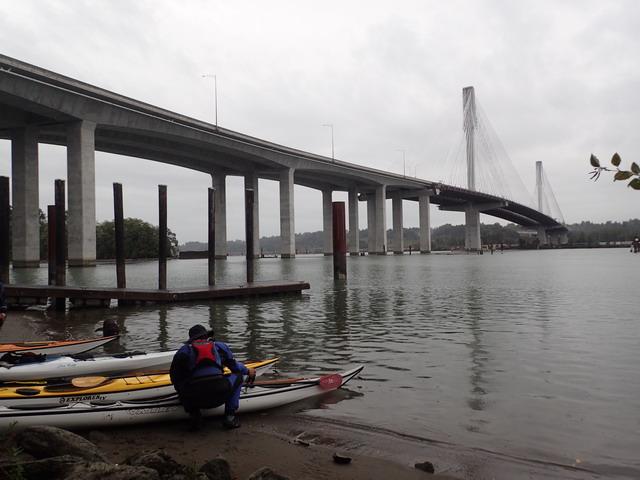 Port Mann Bridge.jpg