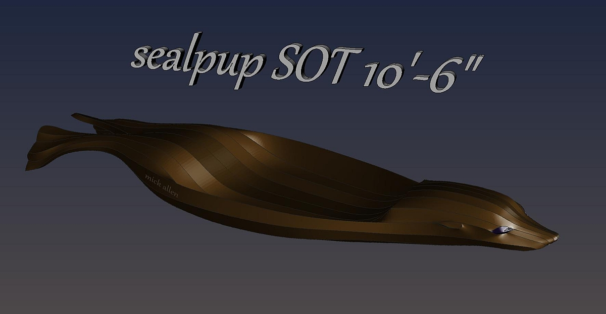 sealpup-SOTsm.jpg