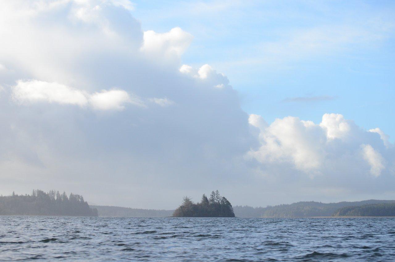 01 Round Island Willapa Bay.JPG