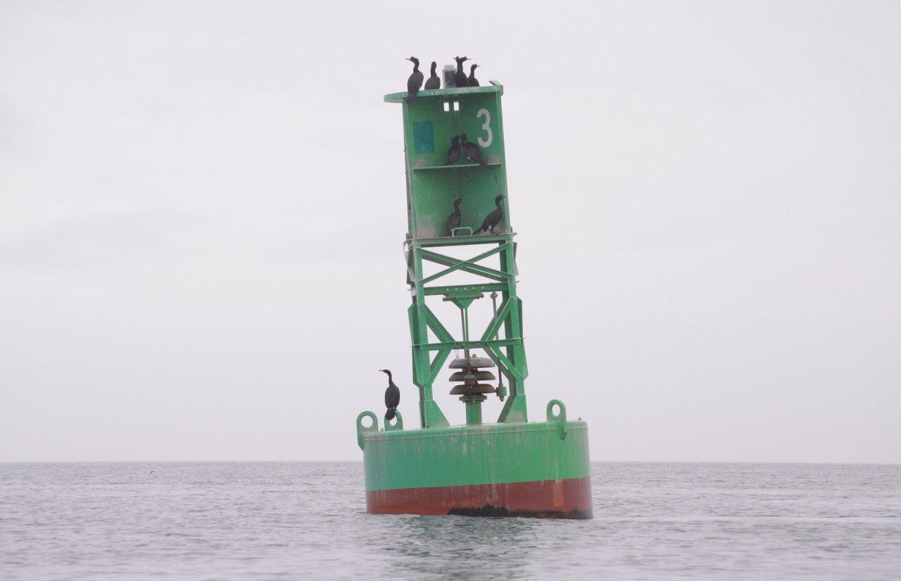 04 Salmon Bank buoy.JPG