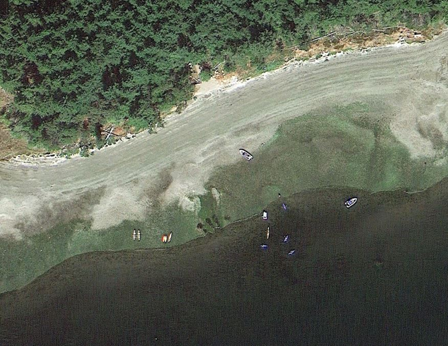 Hope Island WA.JPG
