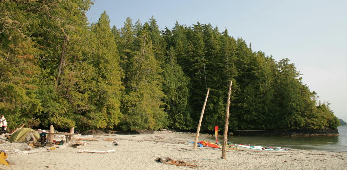 IMG_6277 Rassier Point camp.jpg
