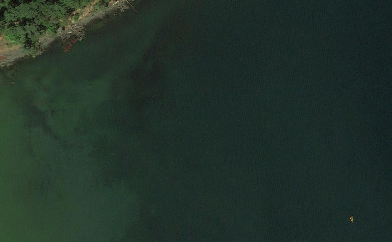 Kayaks in Freshwater Bay, WA.png