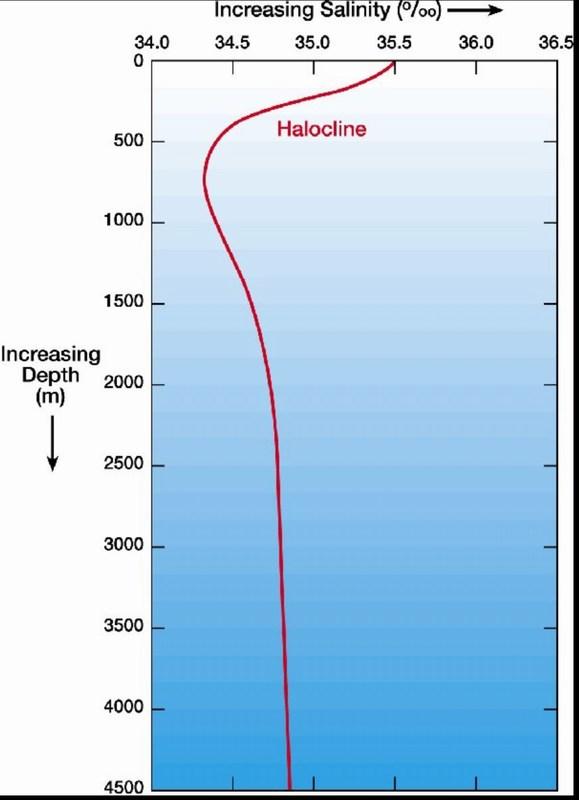 mini-salinity vs depth.JPG